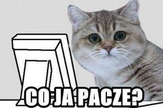 CoJaPacze – głosujemy dalej